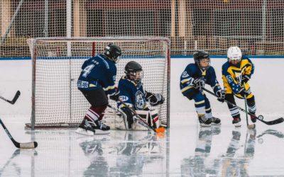 Groupe de Troc Matériel Hockey s/s Glace